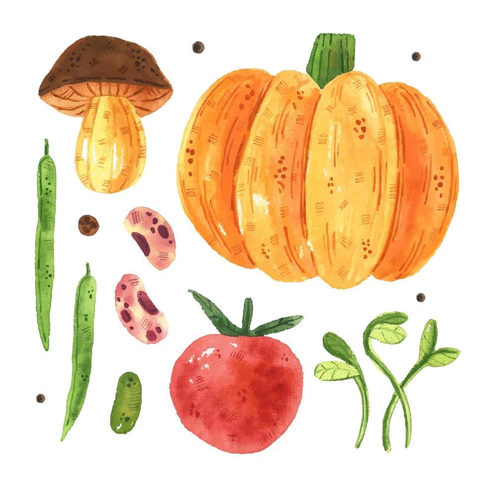 calabaza, champiñón, tomate, guisante, frijol, micro verde. vector