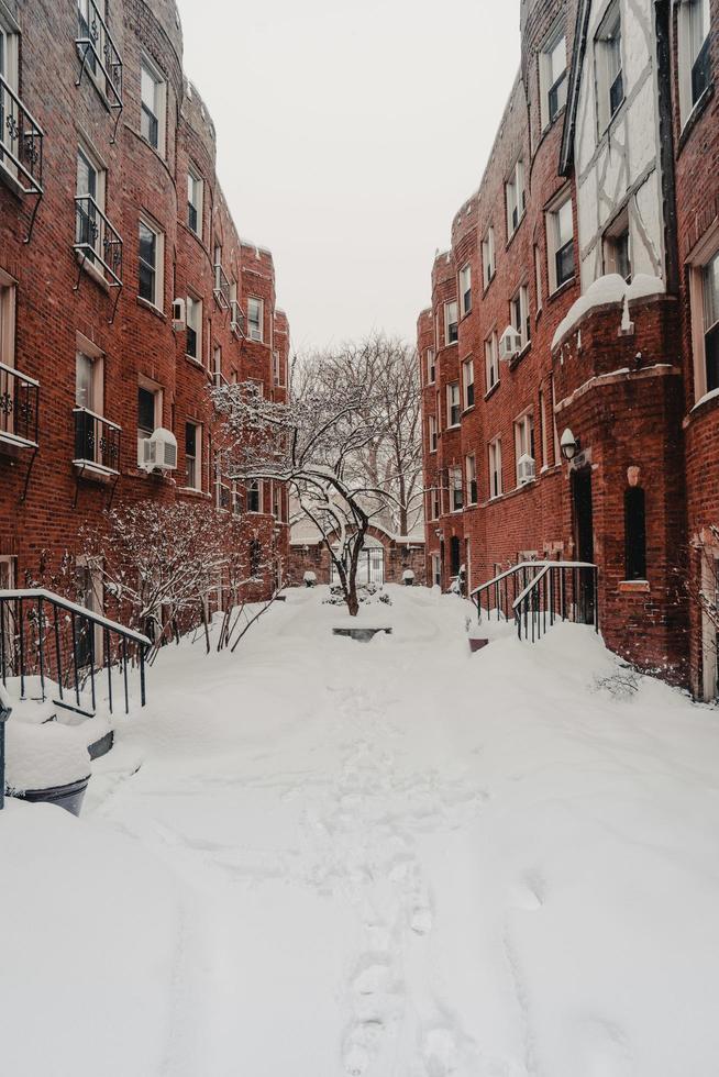 Red brick buildings photo