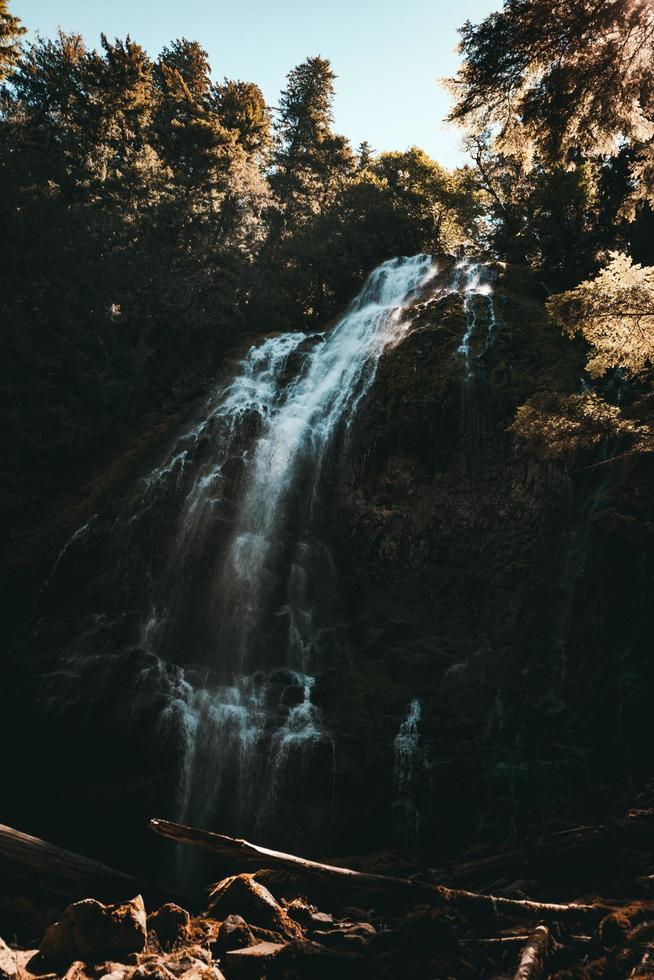 watervallen in het bos overdag foto