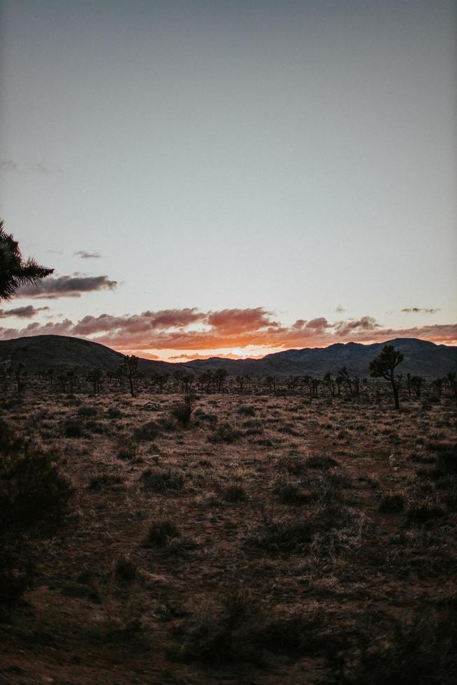 Feld und Berge während des Sonnenuntergangs foto