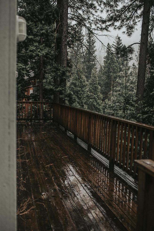 deck de madeira na floresta foto