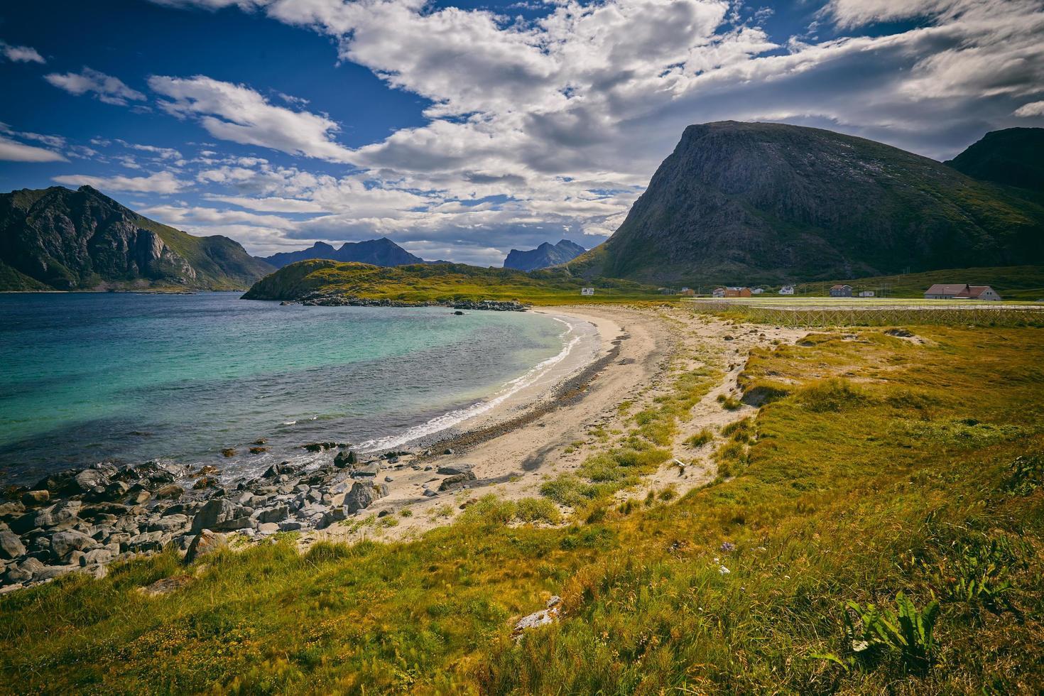 praia ao lado do campo de grama foto