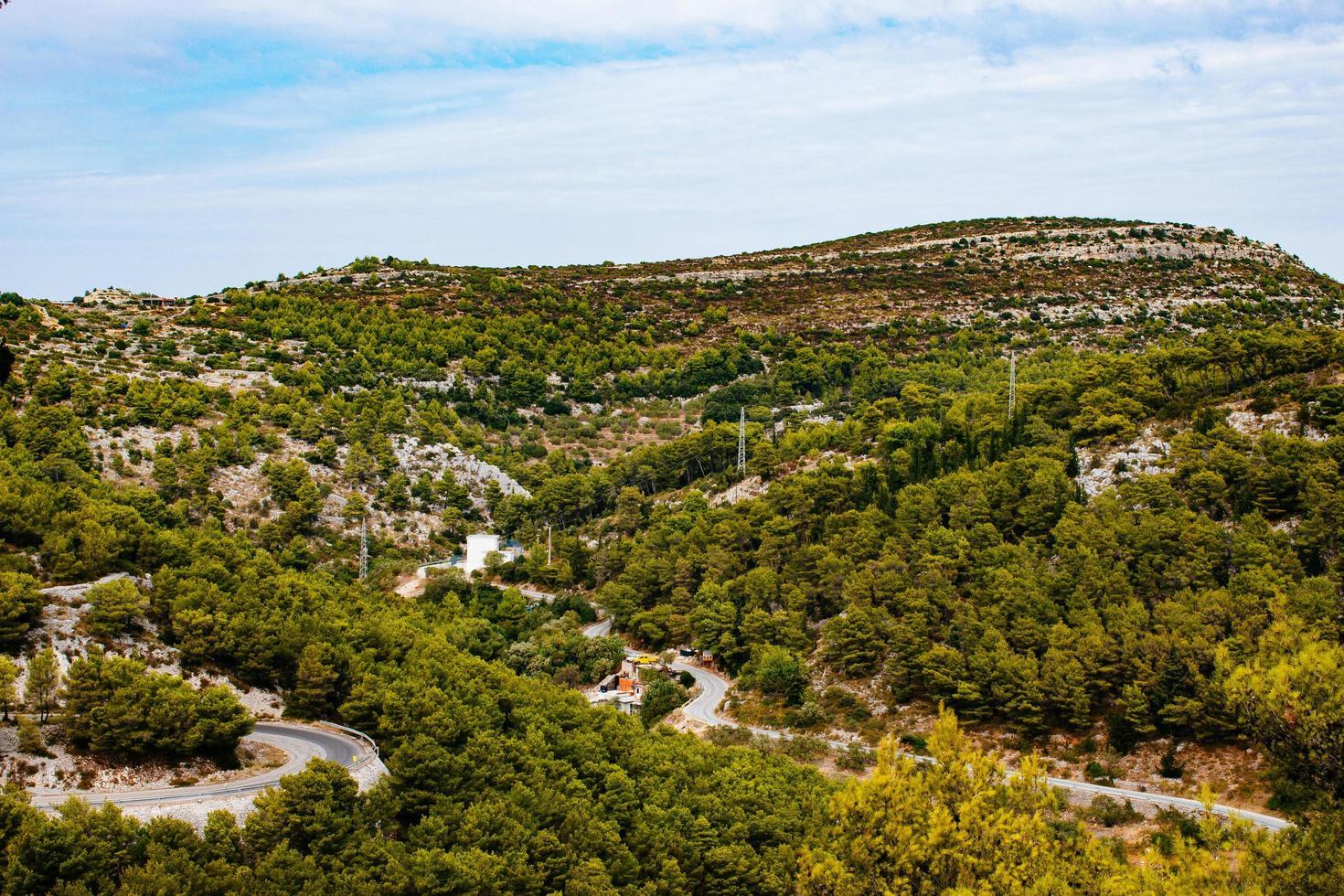 luchtfoto van groen landschap foto