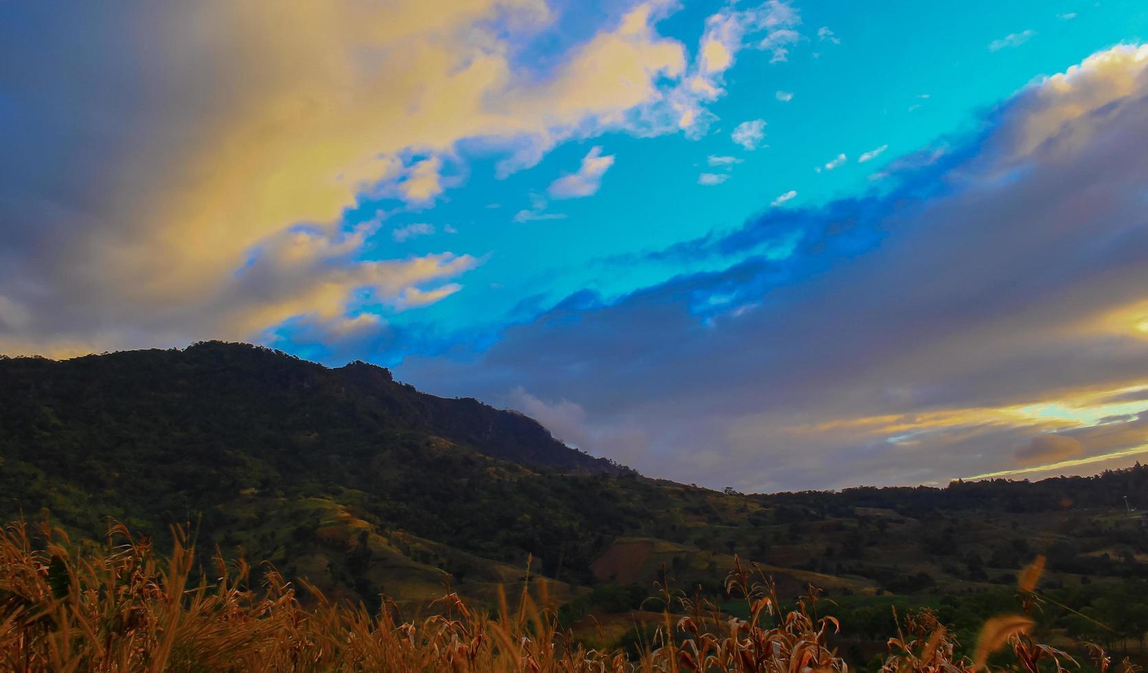 amanecer en un campo foto