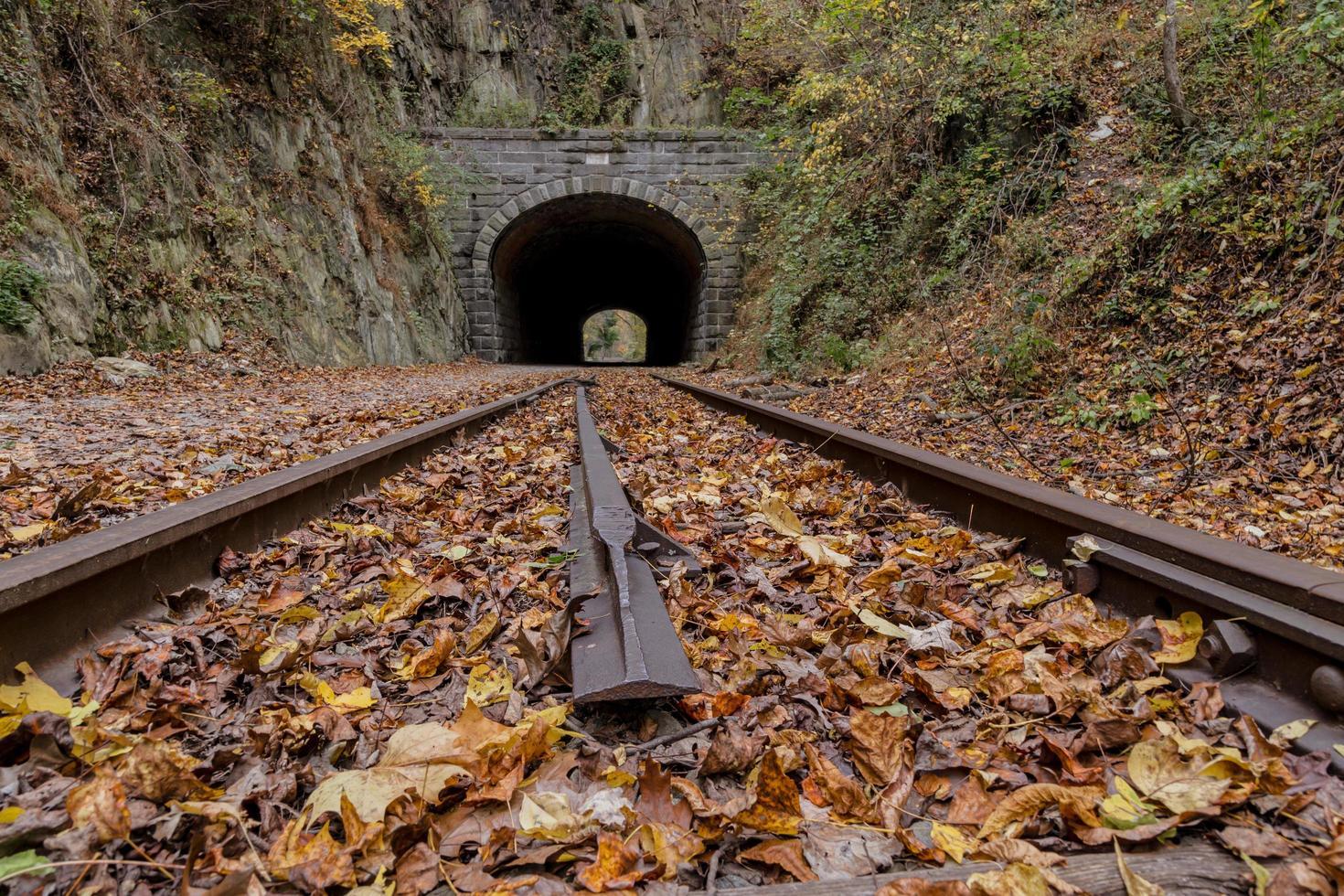 Tunnel and railroad track in autumn photo