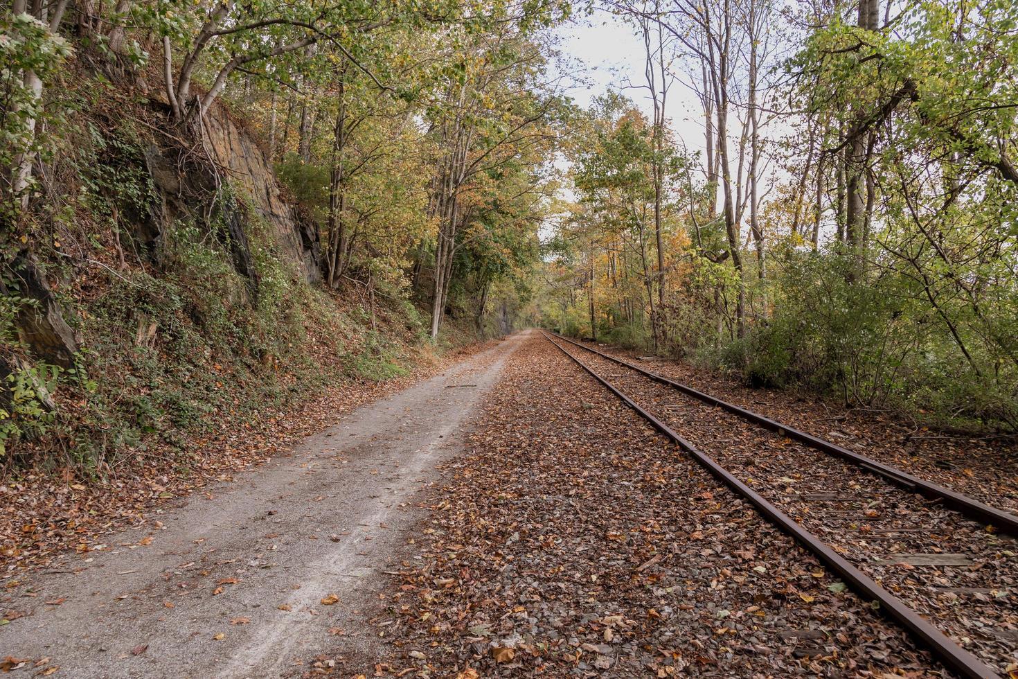 Railroad track in autumn photo