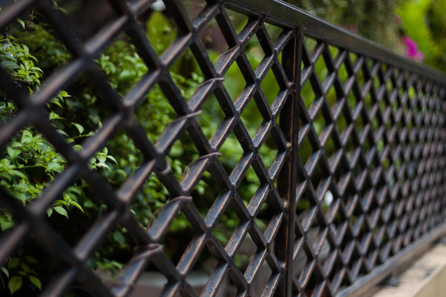 Selective focus of fence photo