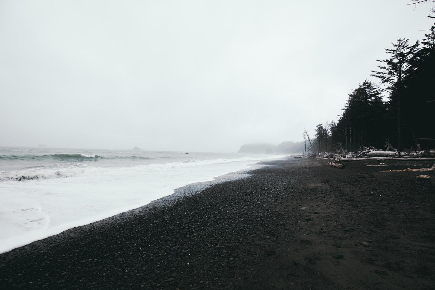 Grayscale photography of seashore photo