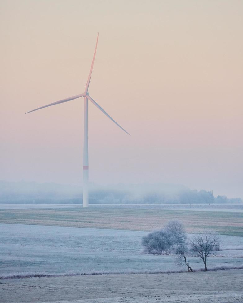 windturbine op grasveld foto