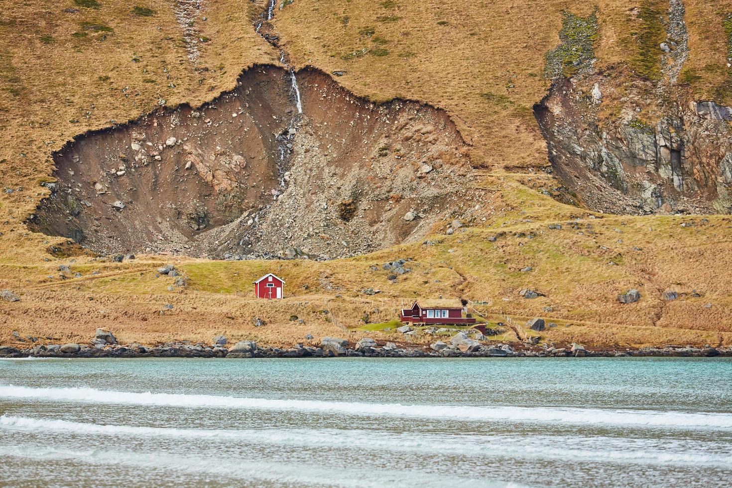 Red houses near the coast photo