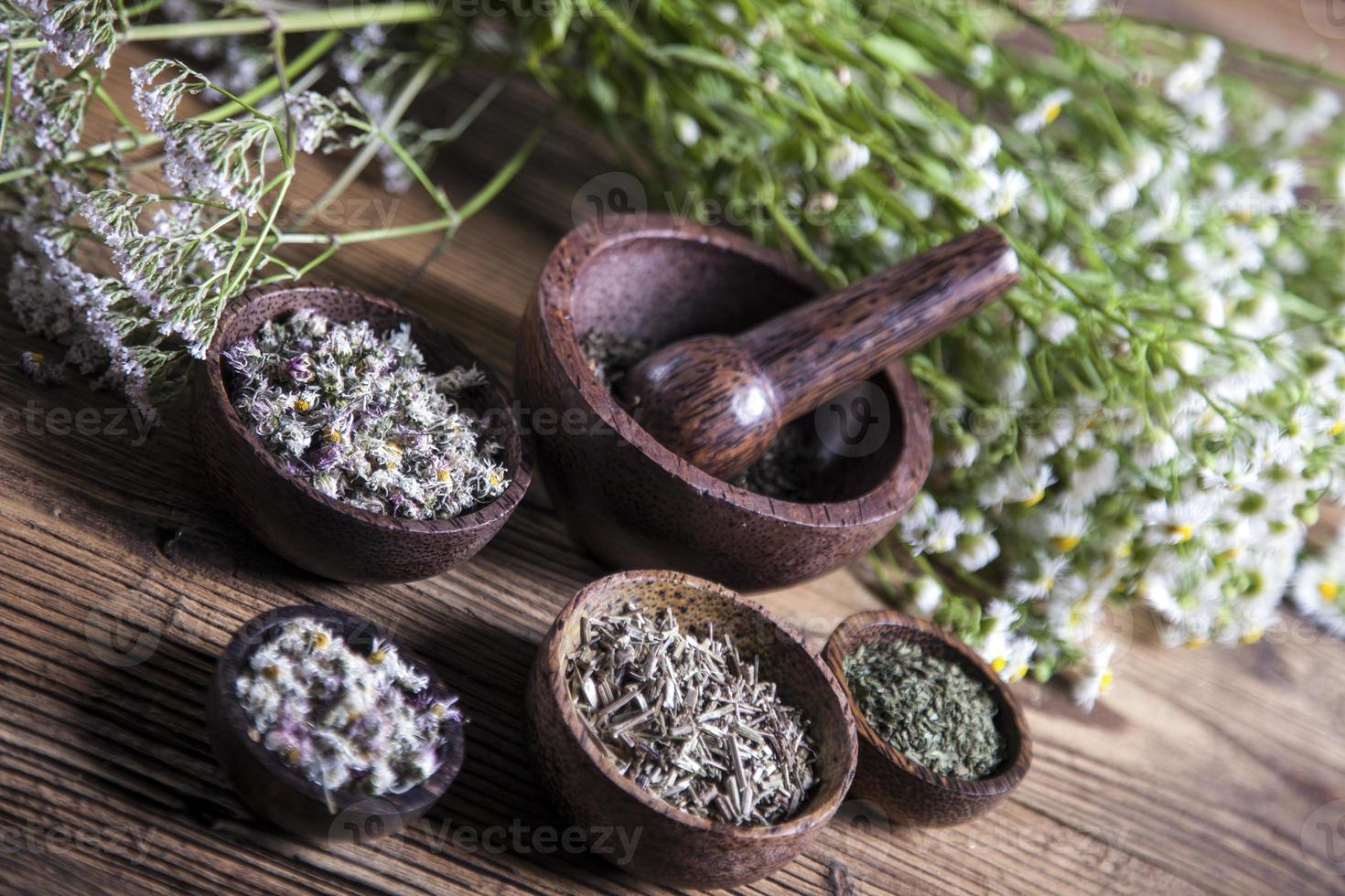 The ancient Chinese medicine photo