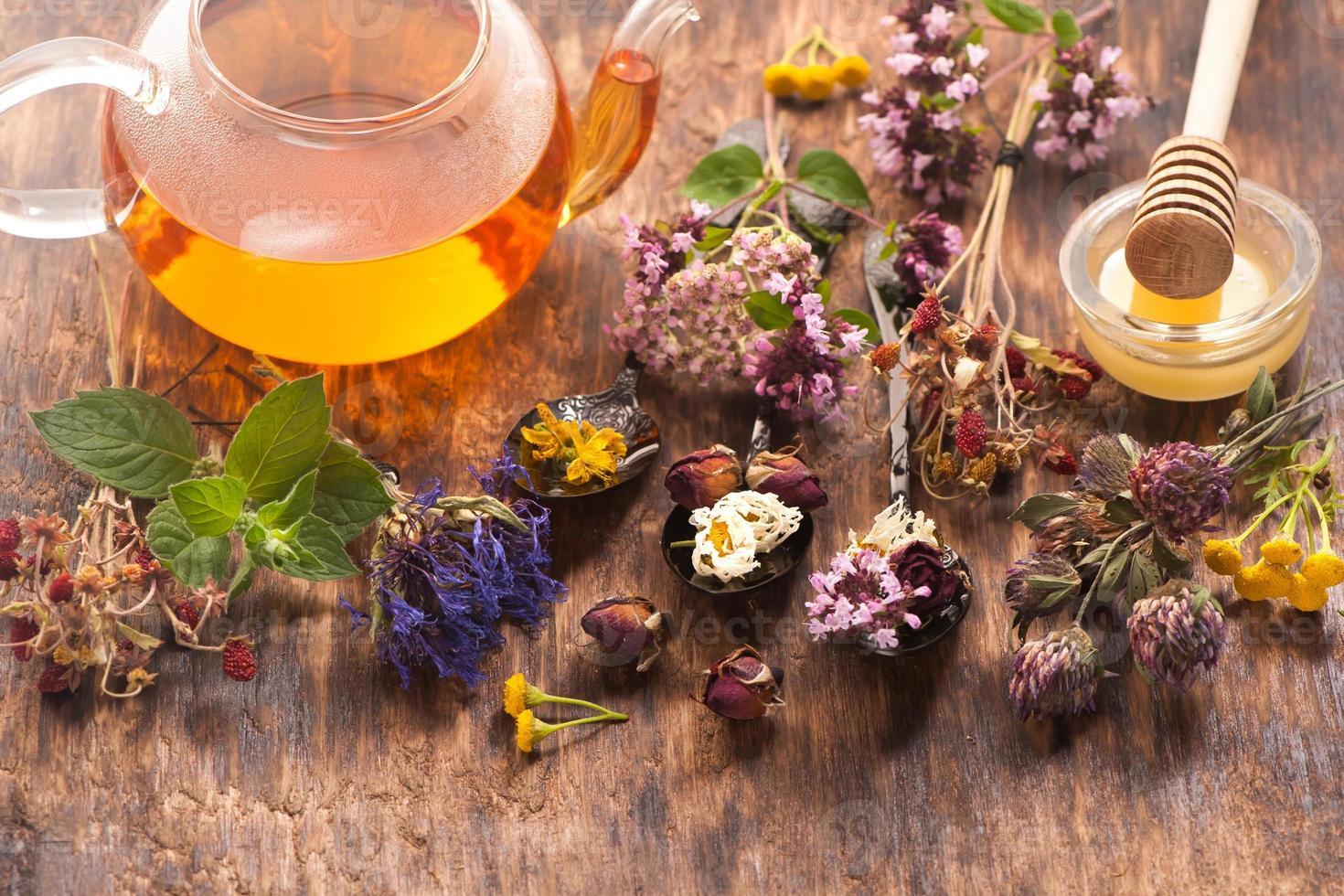 Herbal tea, herbs and flowers, herbal medicine. photo