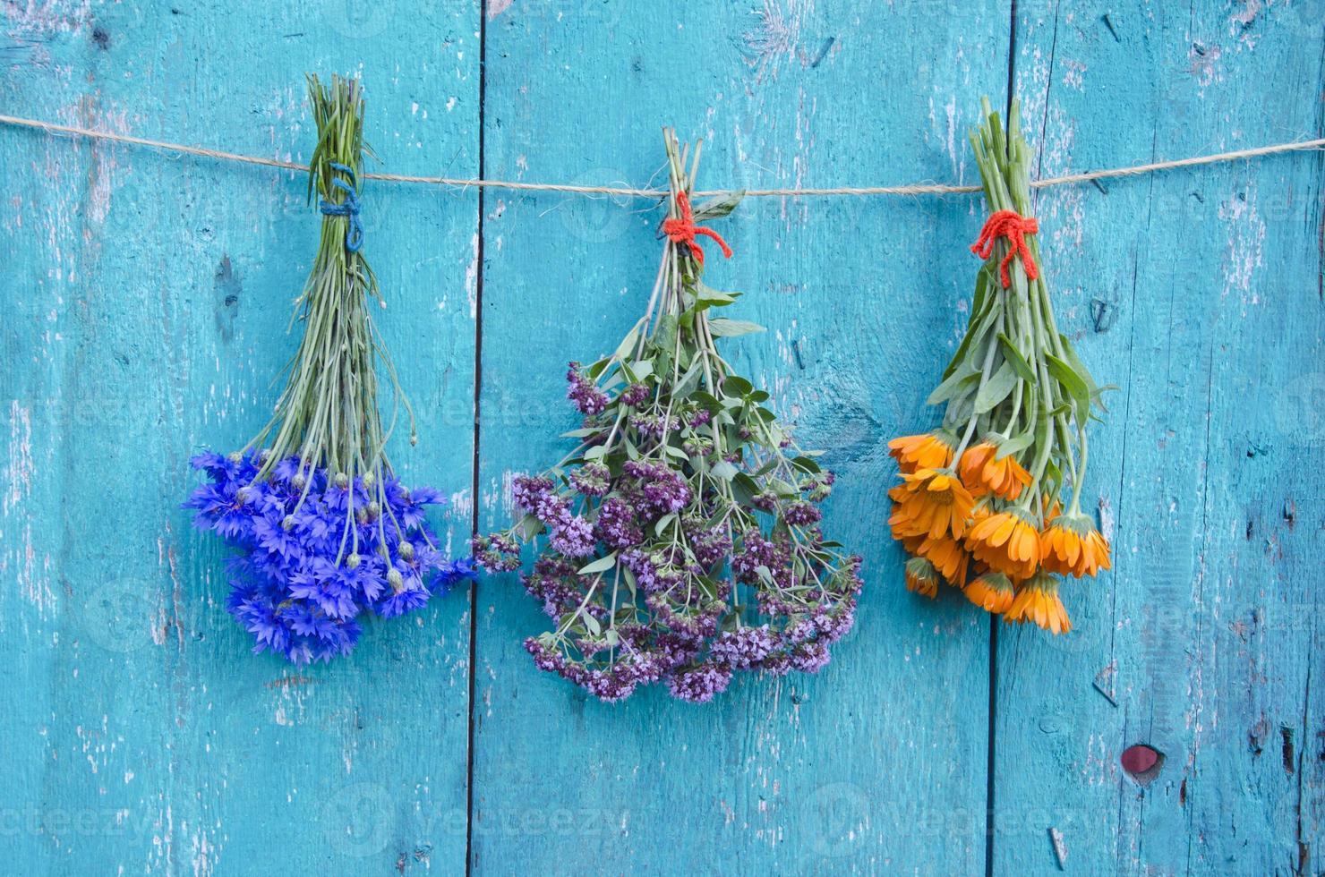 Manojo de tres flores de hierbas medicinales en la pared de madera foto