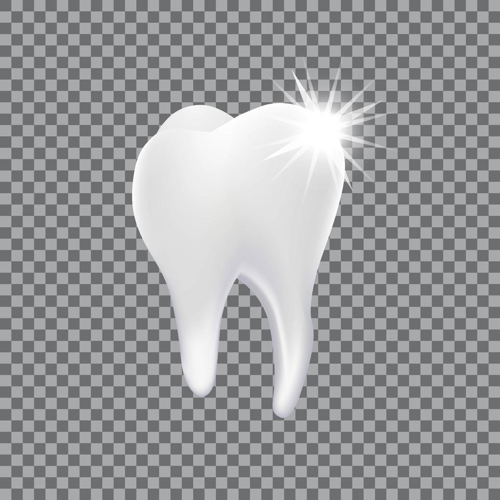diente 3d realista aislado vector