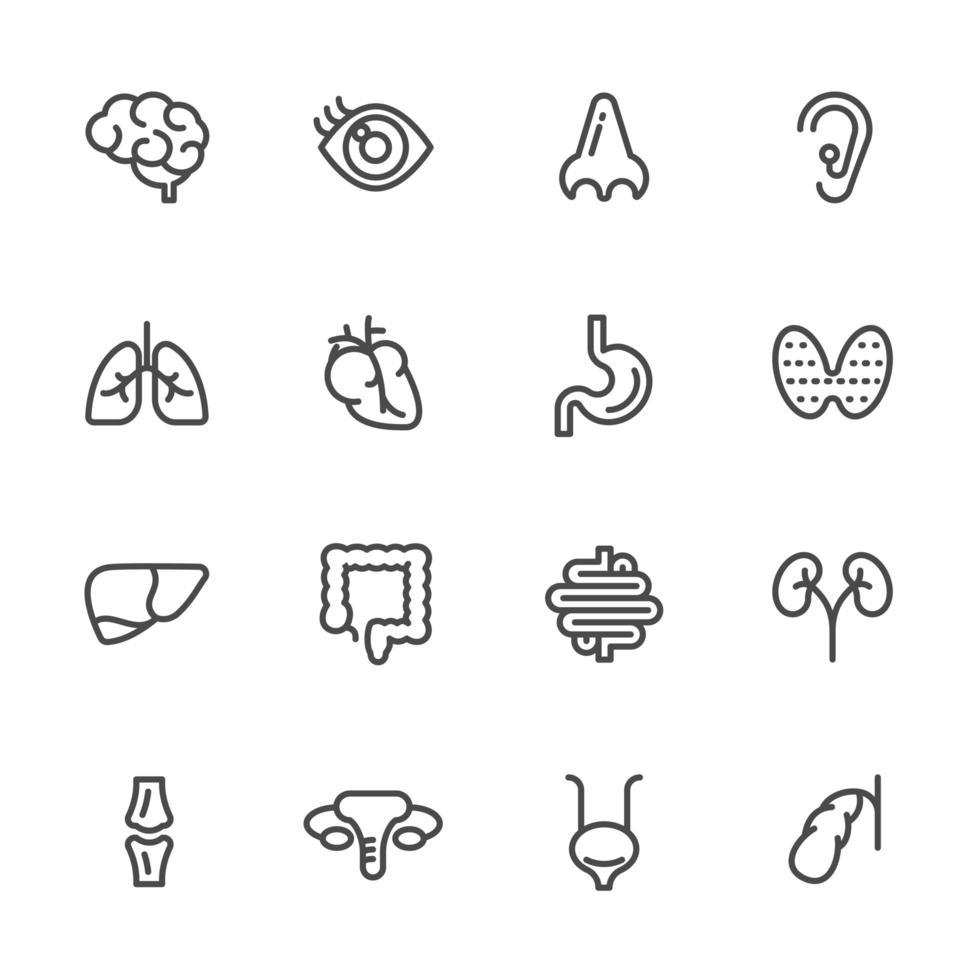 conjunto de ícones de pictograma de anatomia vetor