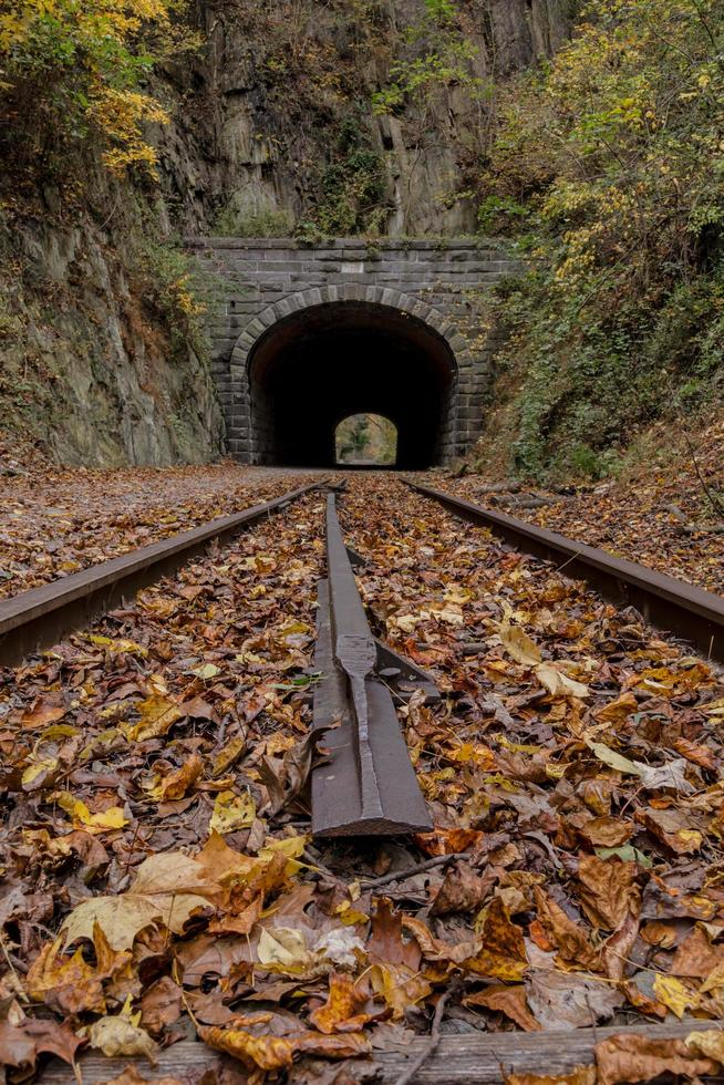 Vertical view of railroad tracks and tunnel photo
