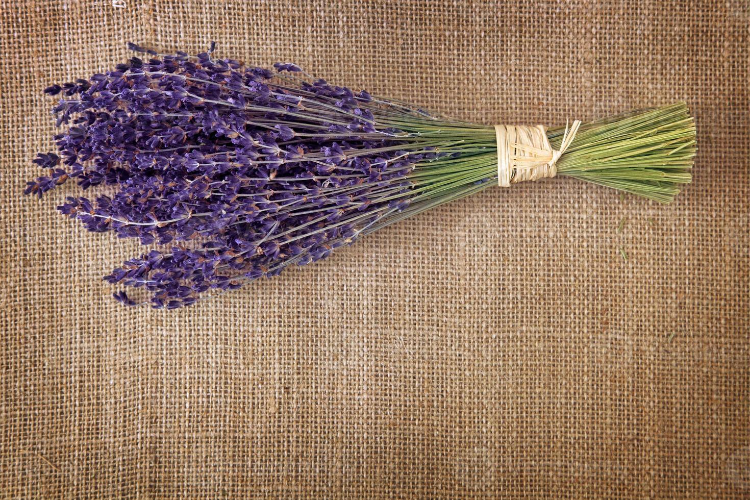 ramo de flores de lavanda secas foto