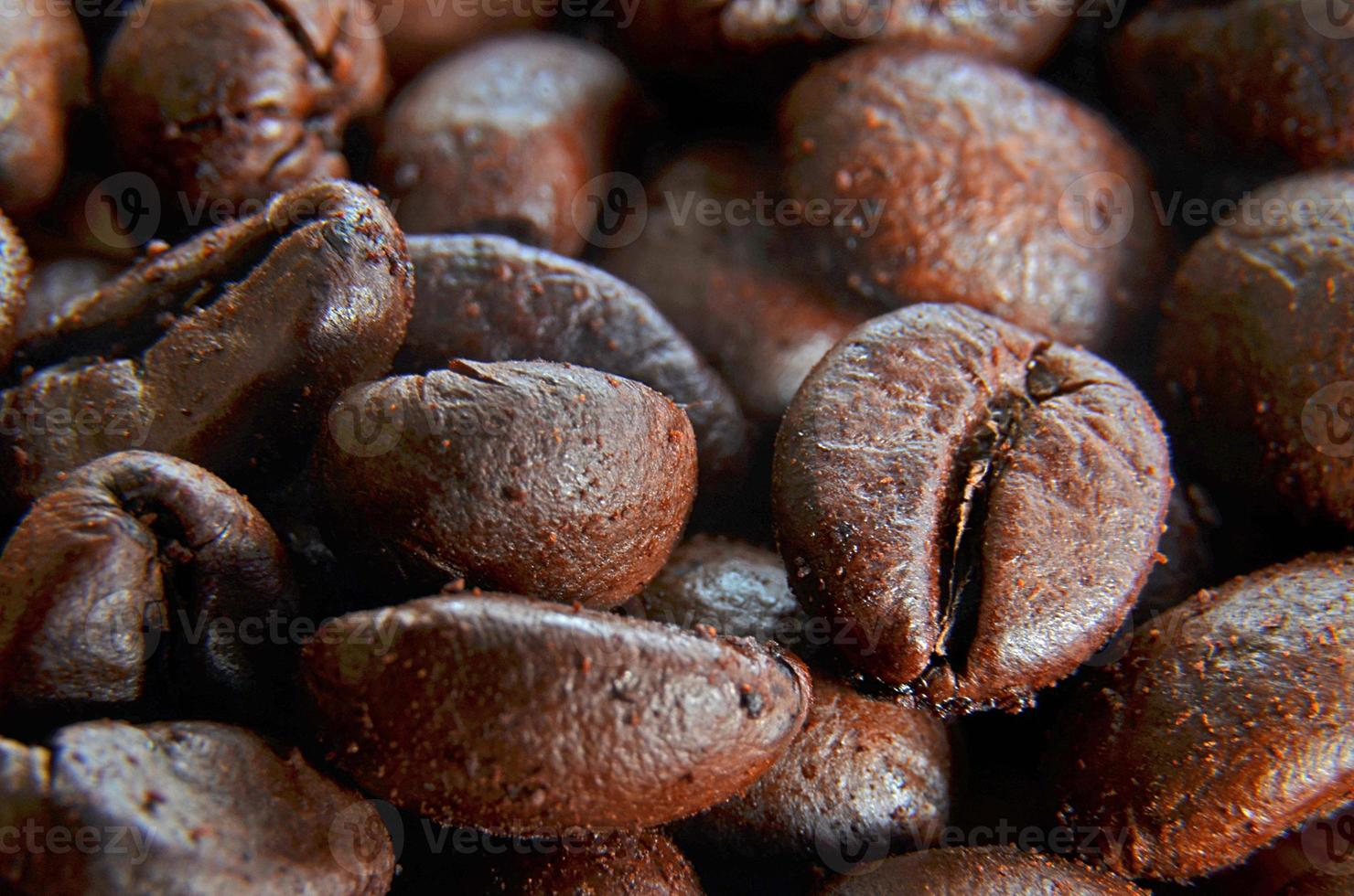 detalle de granos de cafe foto