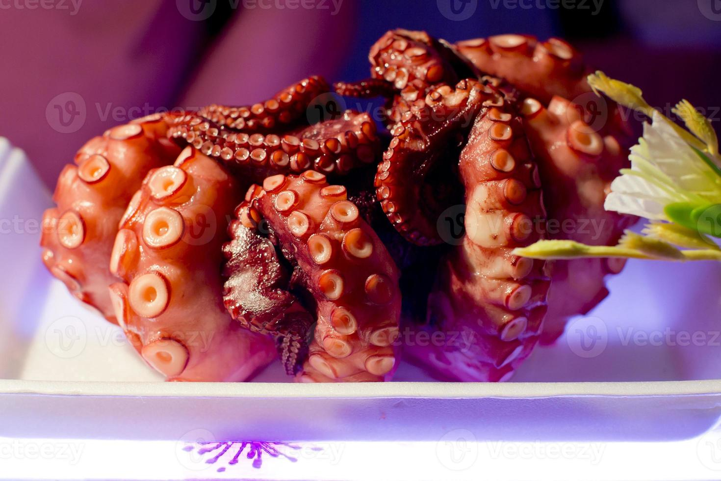 Freshly cooked purple octopus photo
