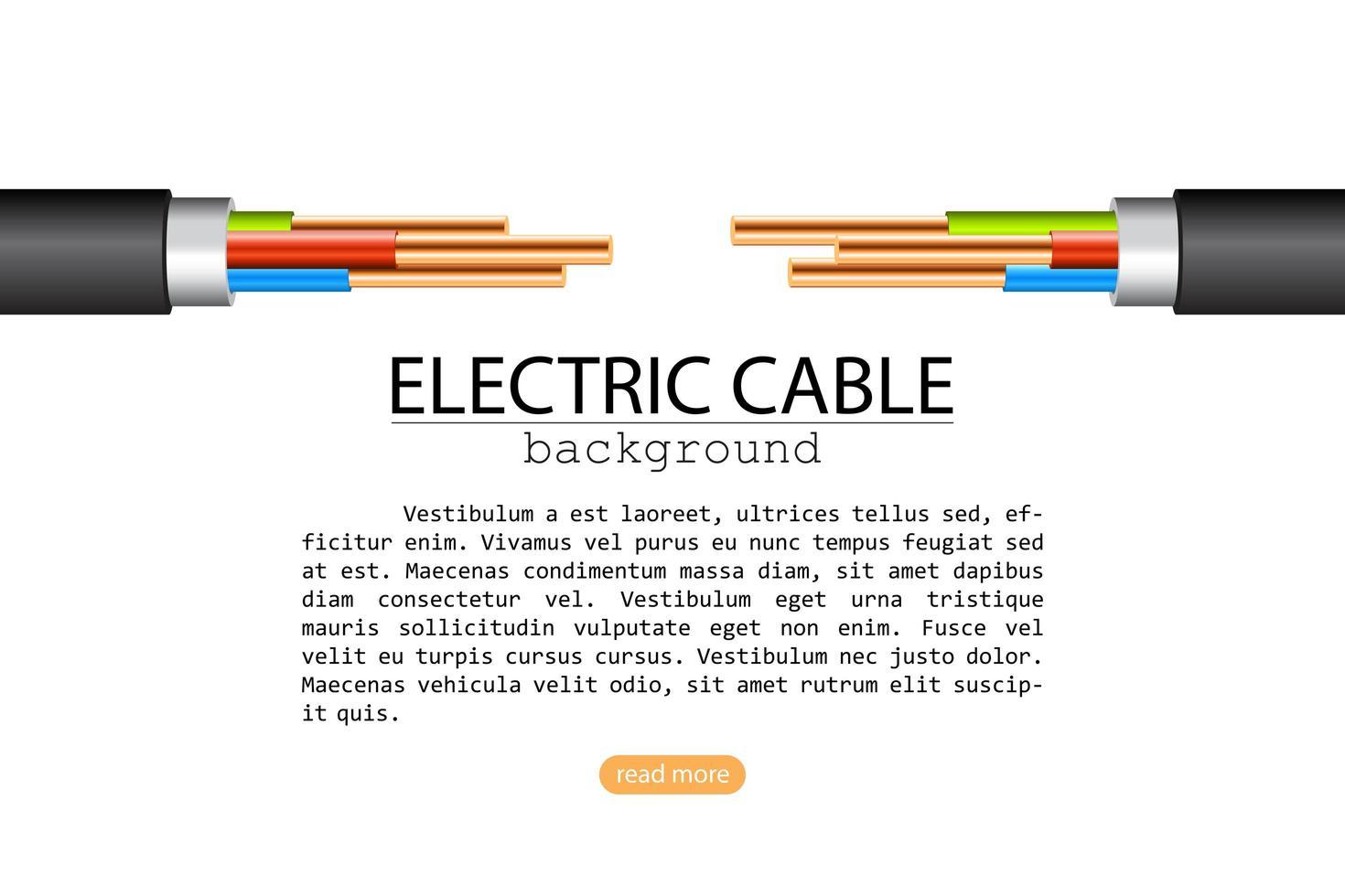 dois cabos elétricos isolados no branco vetor