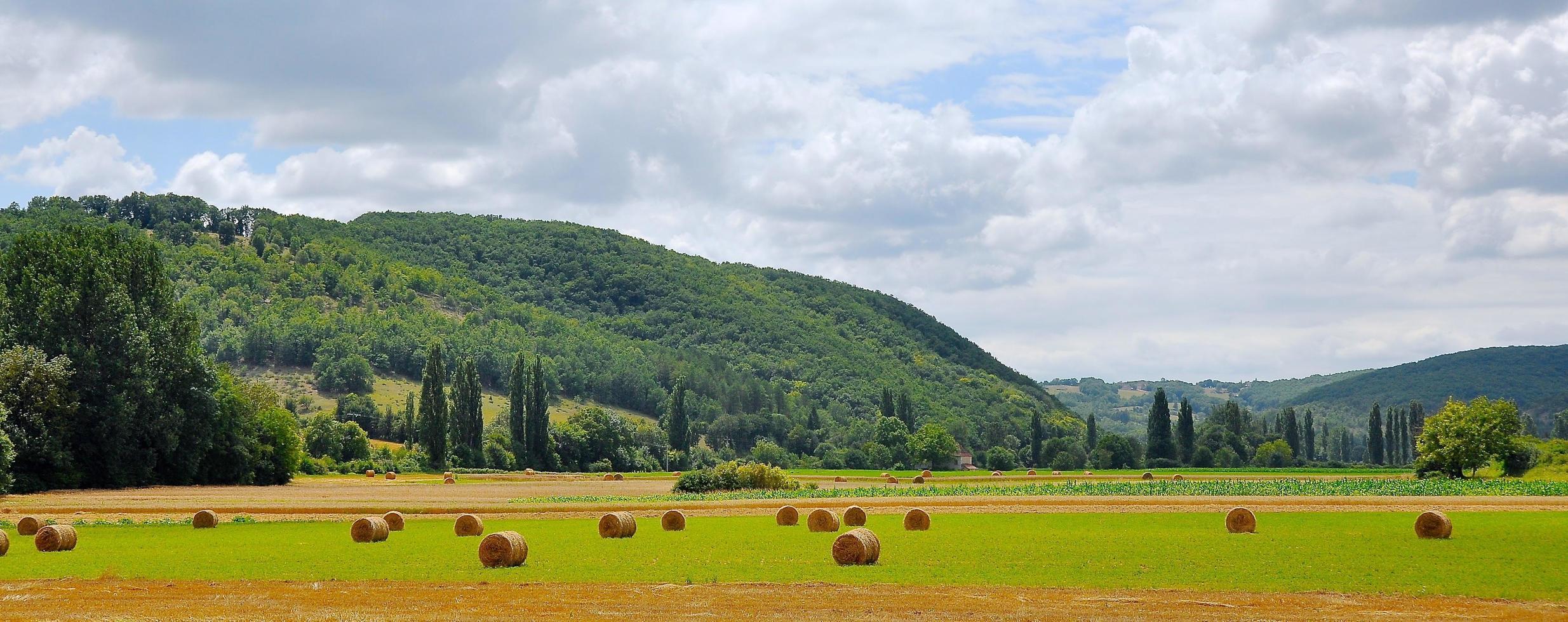 Panorama de montones de heno en el campo durante el día foto