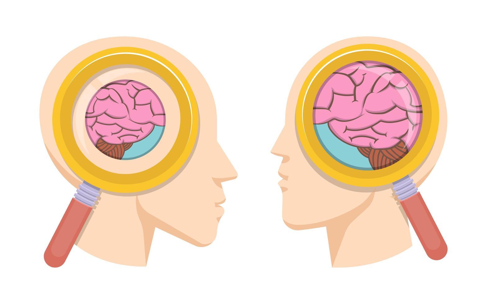 concepto de estudio del cerebro humano vector