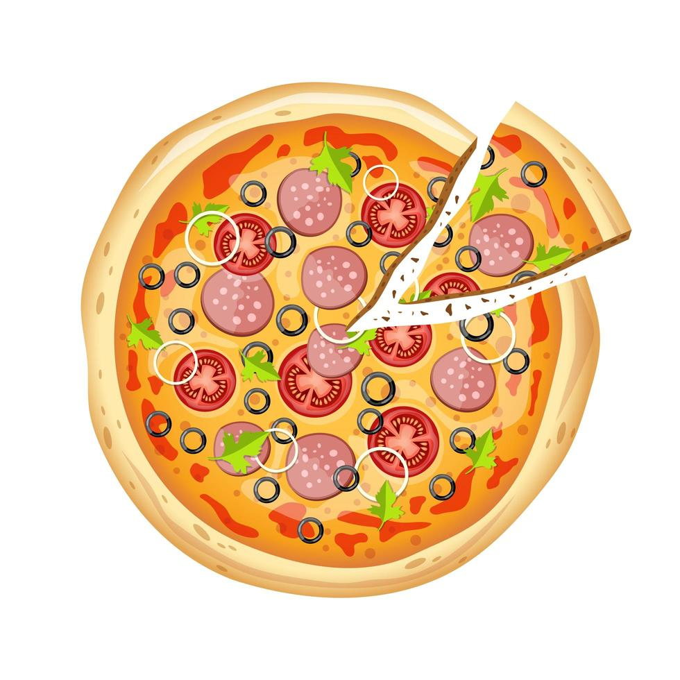 Fresh delicious pizza  vector