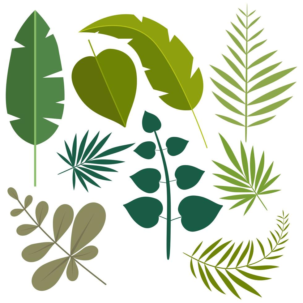 Set Of Tropical Leaves Download Free Vectors Clipart Graphics Vector Art Blue, red, and pink swiss cheese leaves print textile. set of tropical leaves download free