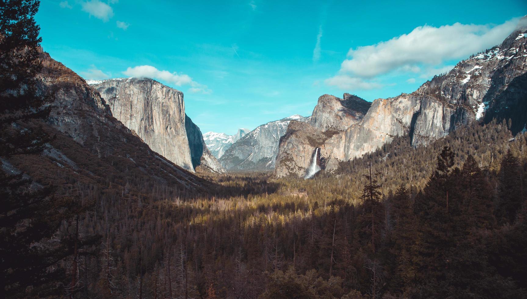 Landscape in the Yosemite National Park photo