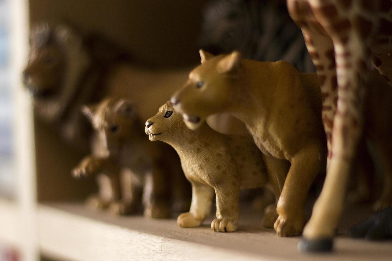 Animal toy figures photo