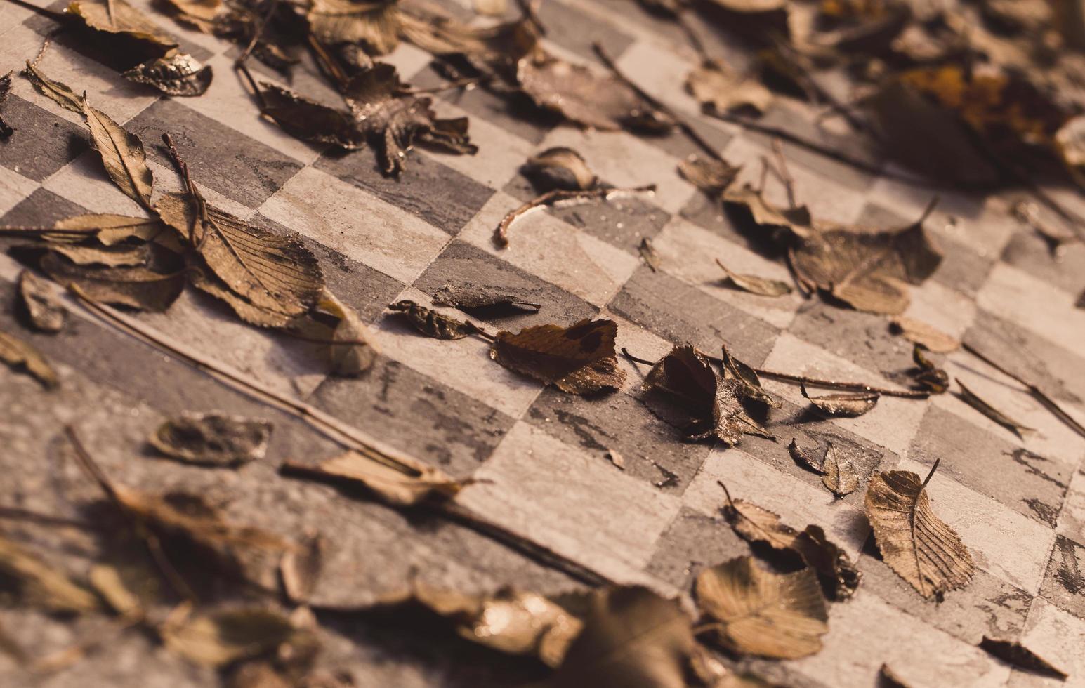 hojas marrones en la mesa de ajedrez foto