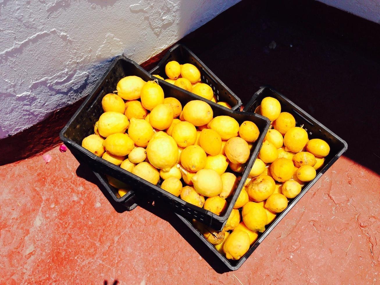 cajas de limones foto