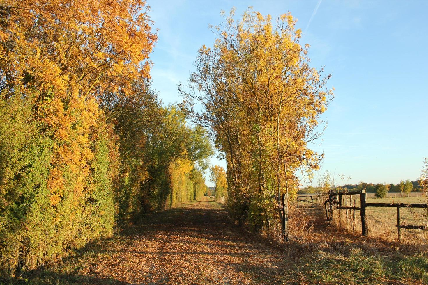 Autumn in the French countryside  photo