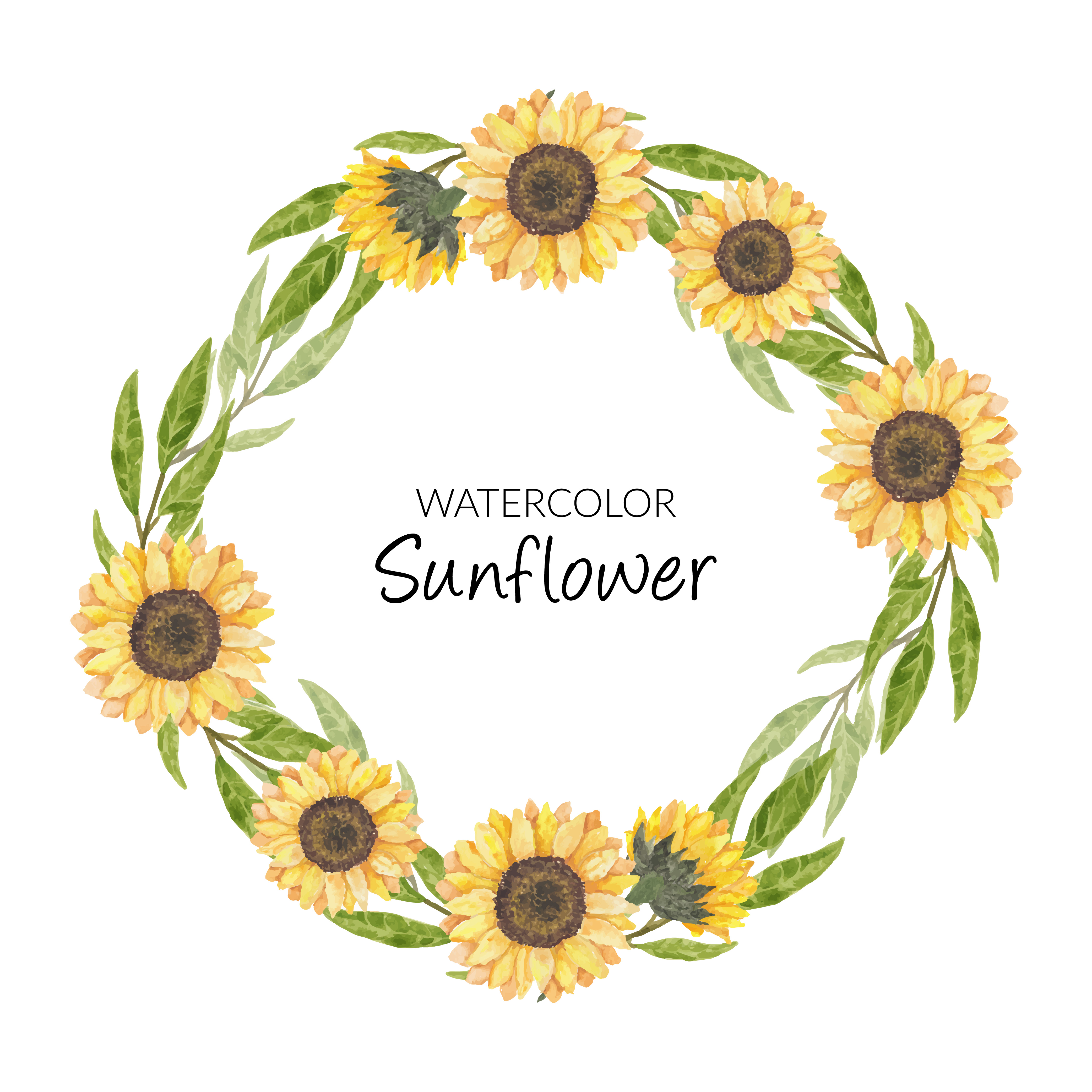 Hand Painted Watercolor Sunflower Wreath Circle Border Download Free Vectors Clipart Graphics Vector Art
