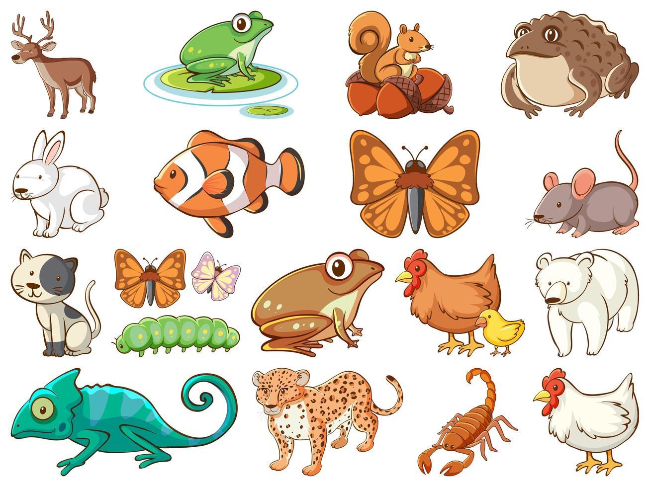 grote reeks dieren in het wild met veel soorten dieren vector