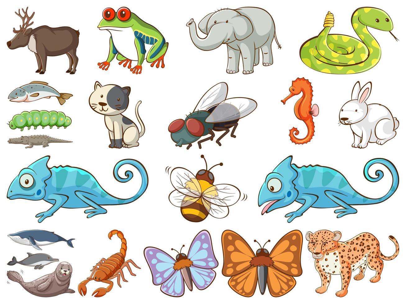 gran conjunto de vida silvestre con muchos tipos de animales. vector
