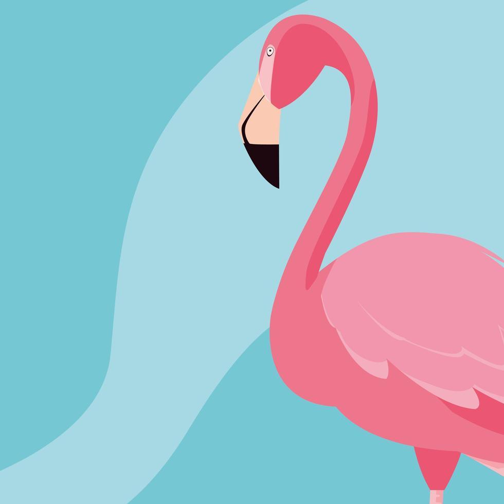 hermoso soporte de pájaro flamenco vector