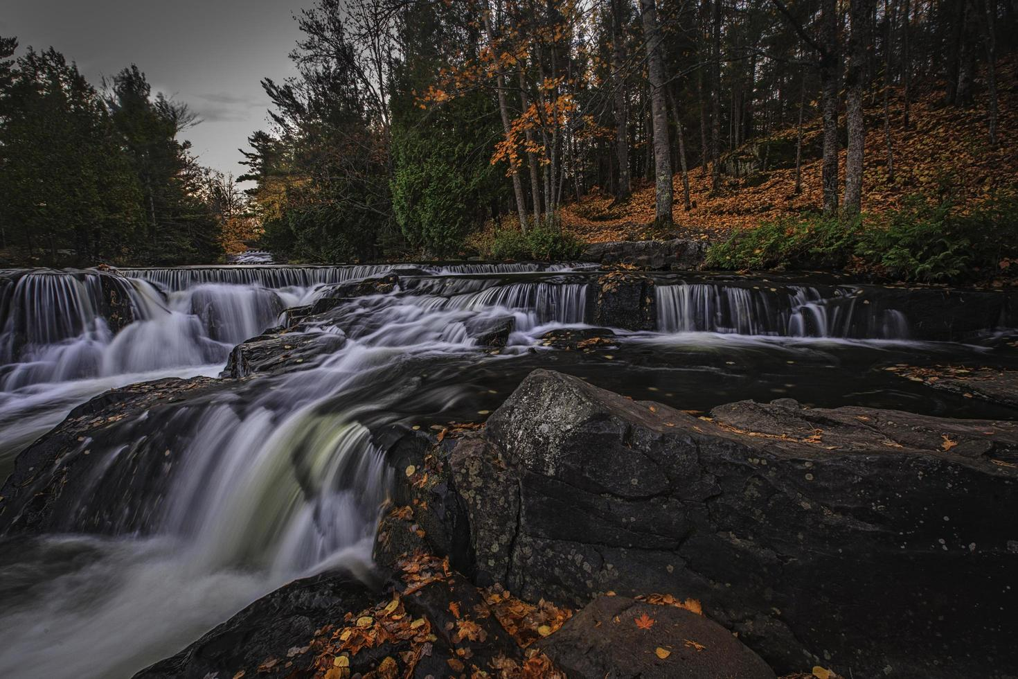 Flowing river in a forest photo