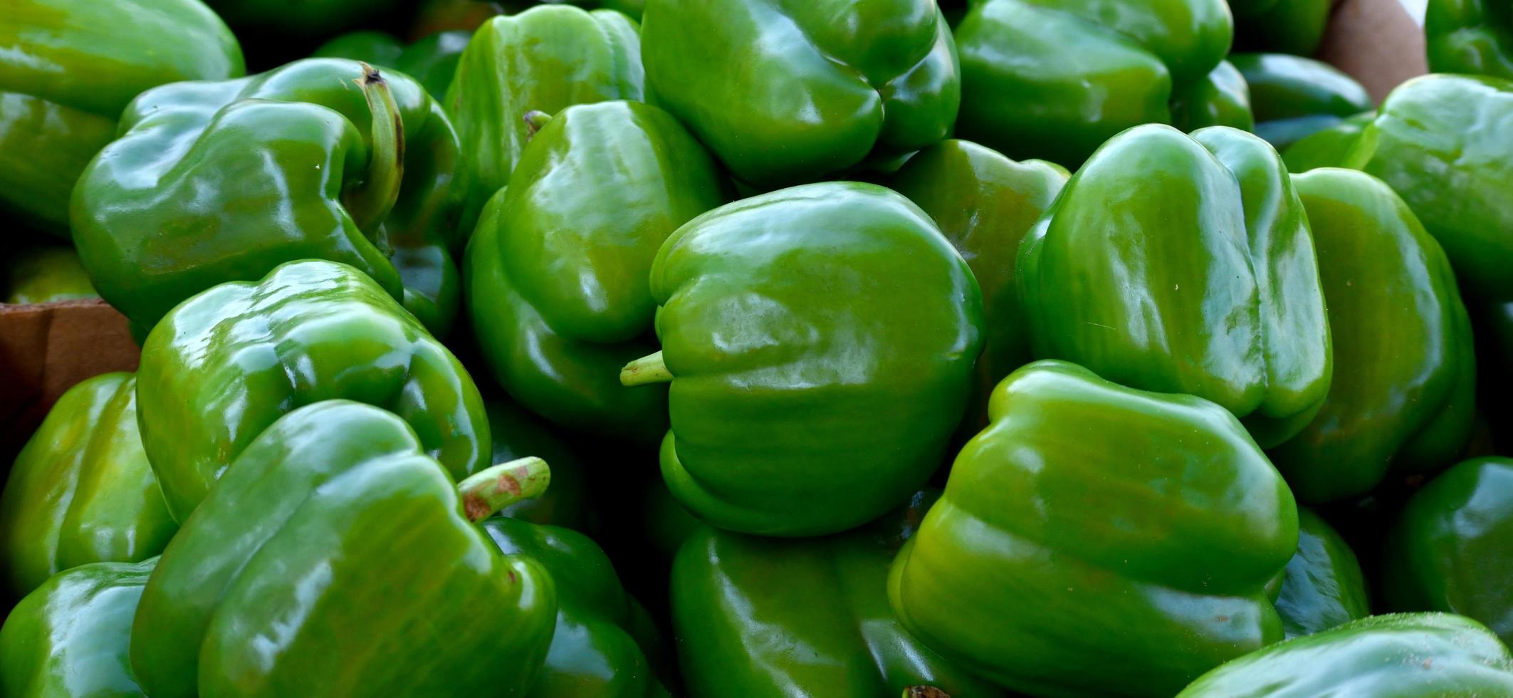 Green peppers at the market photo