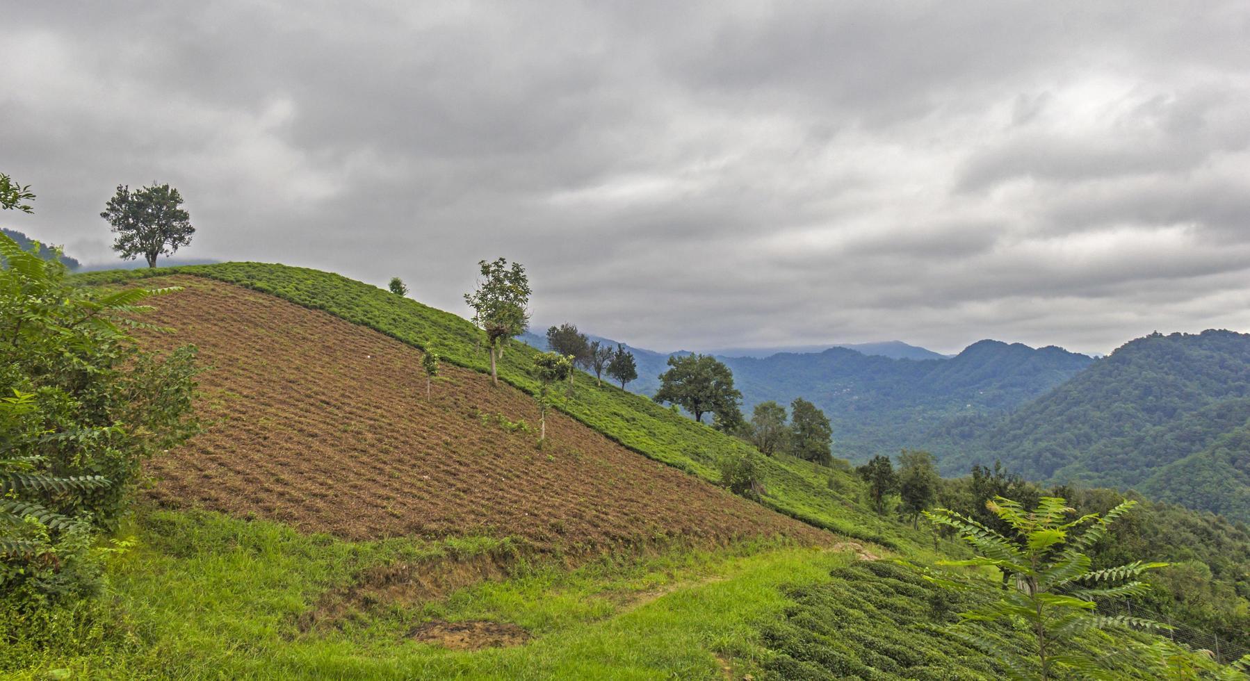 Cloudy hilltop landscape photo