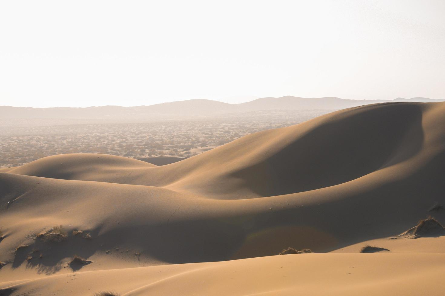 woestijn in het zomerseizoen foto