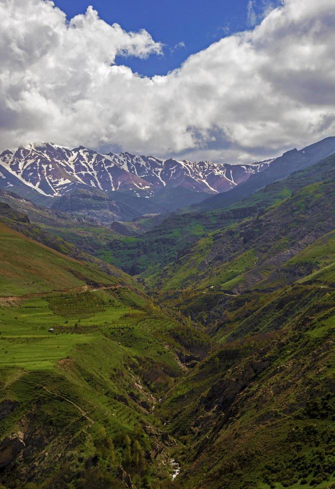 A village in a green plain photo