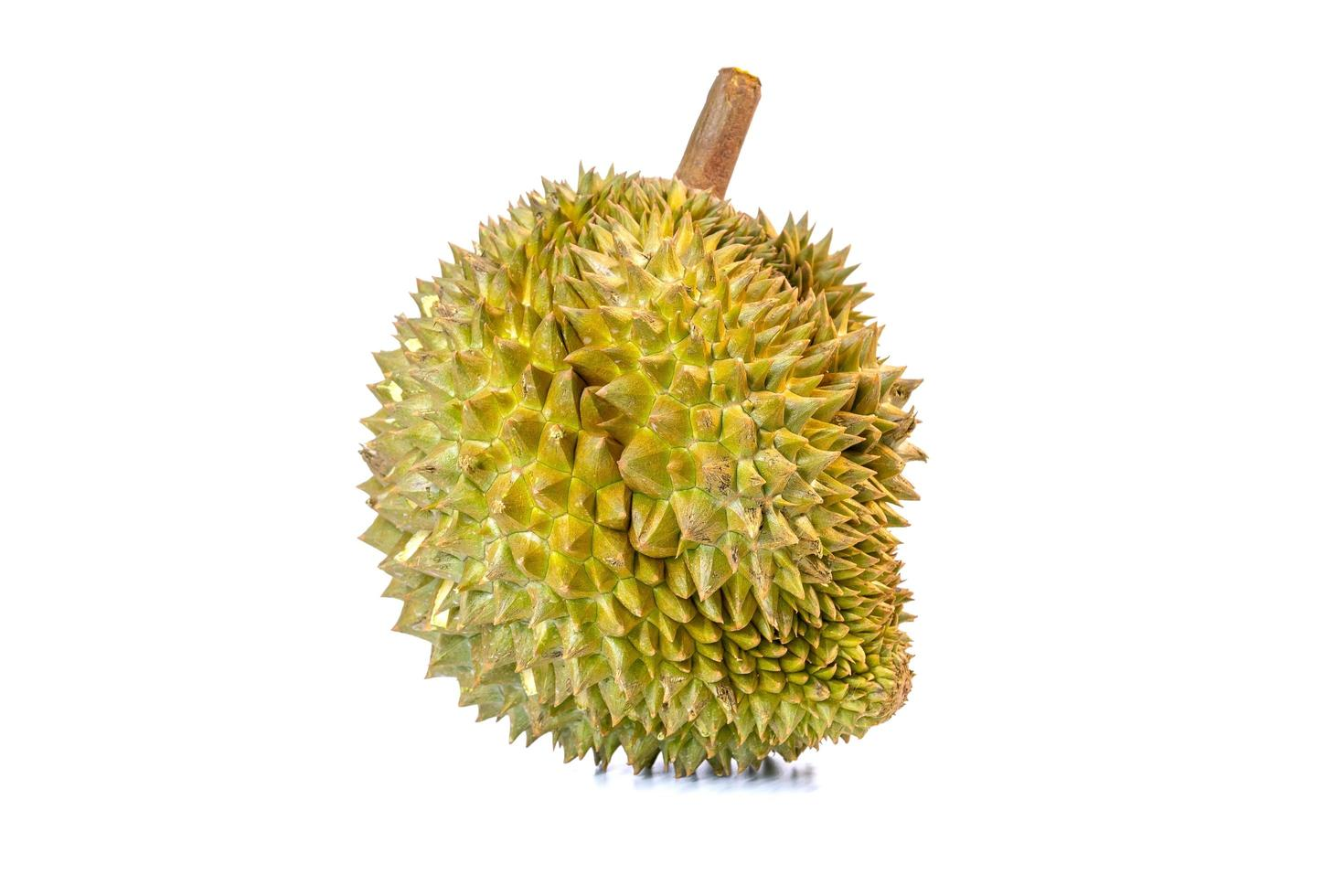 Close-up of a durian fruit photo