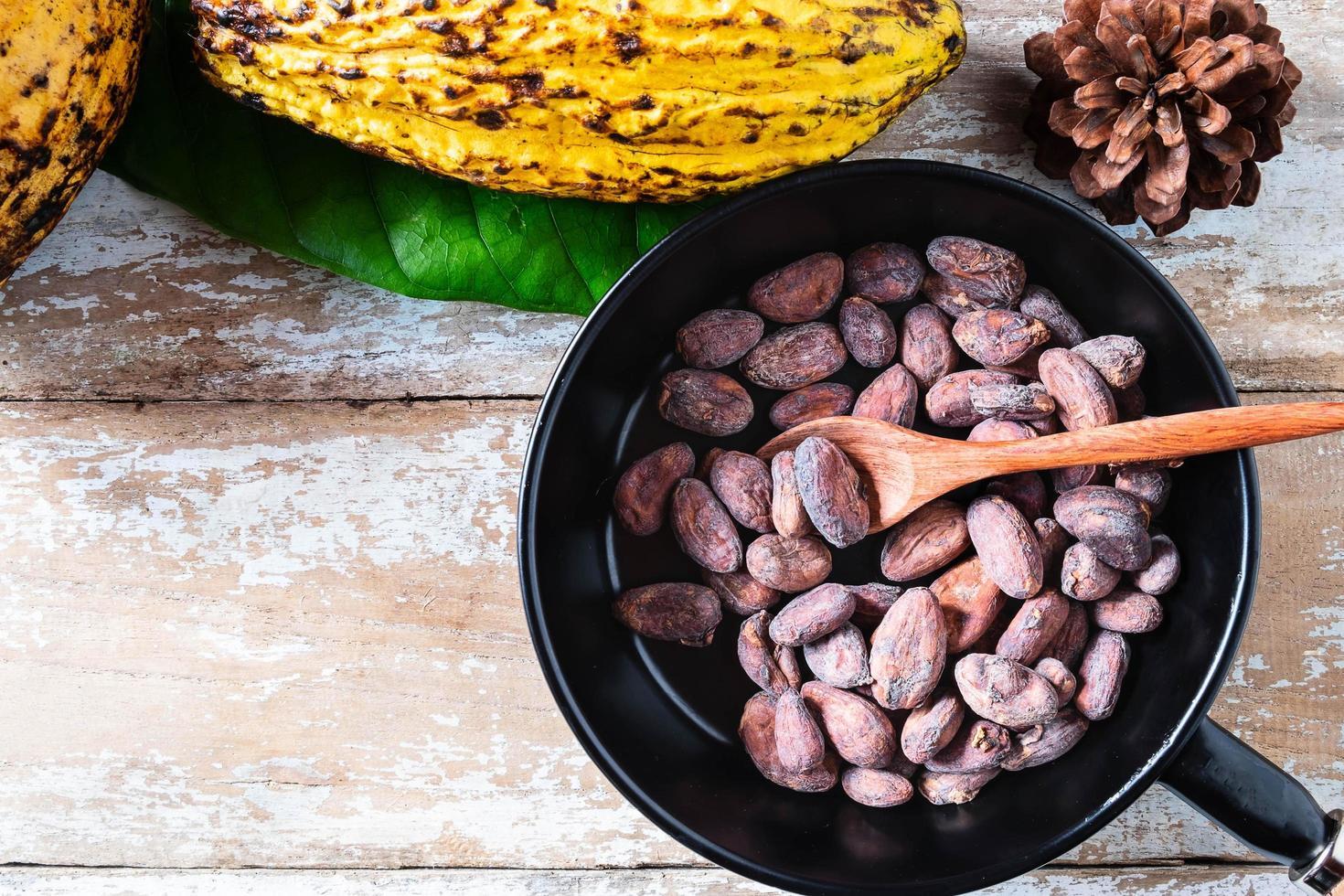 granos de cacao crudo y mazorcas de cacao foto