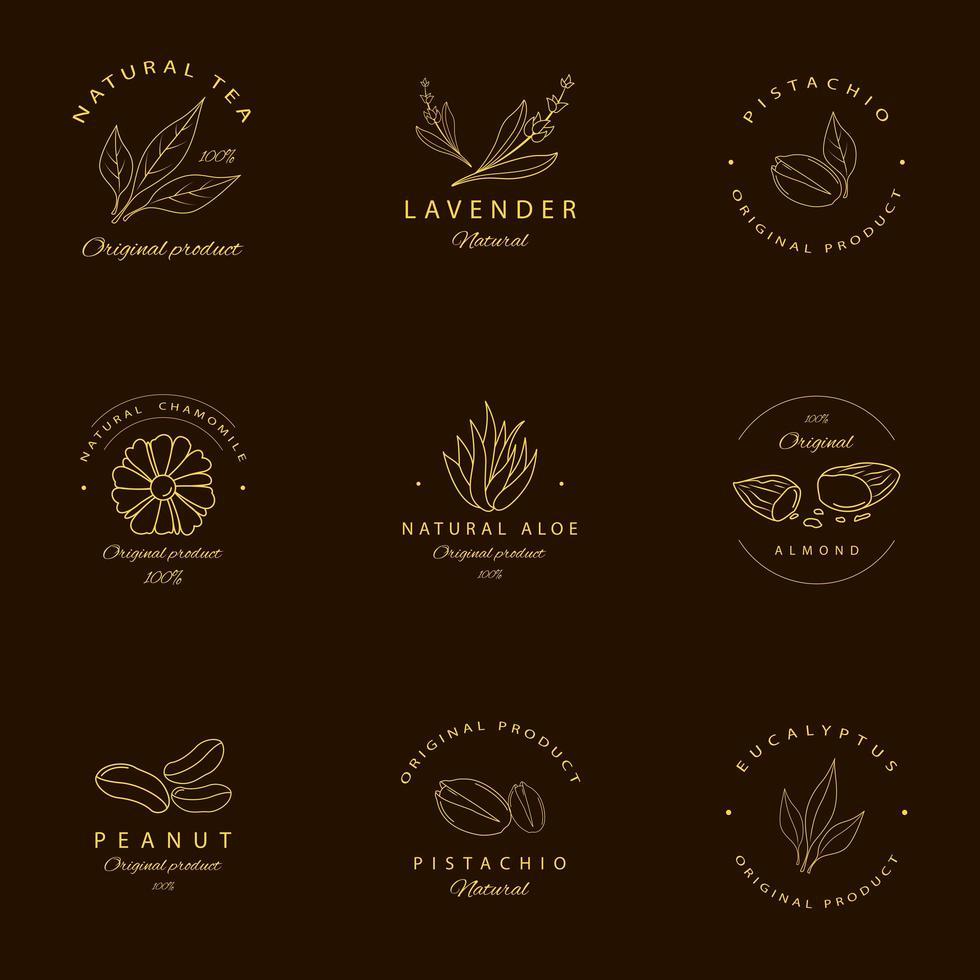 Emblemas de alimentos e plantas naturais estilo linha dourada vetor