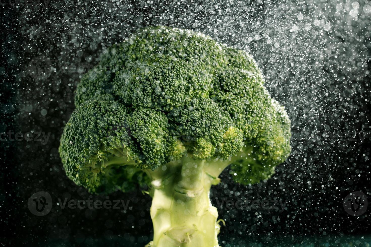 broccoli on black background photo