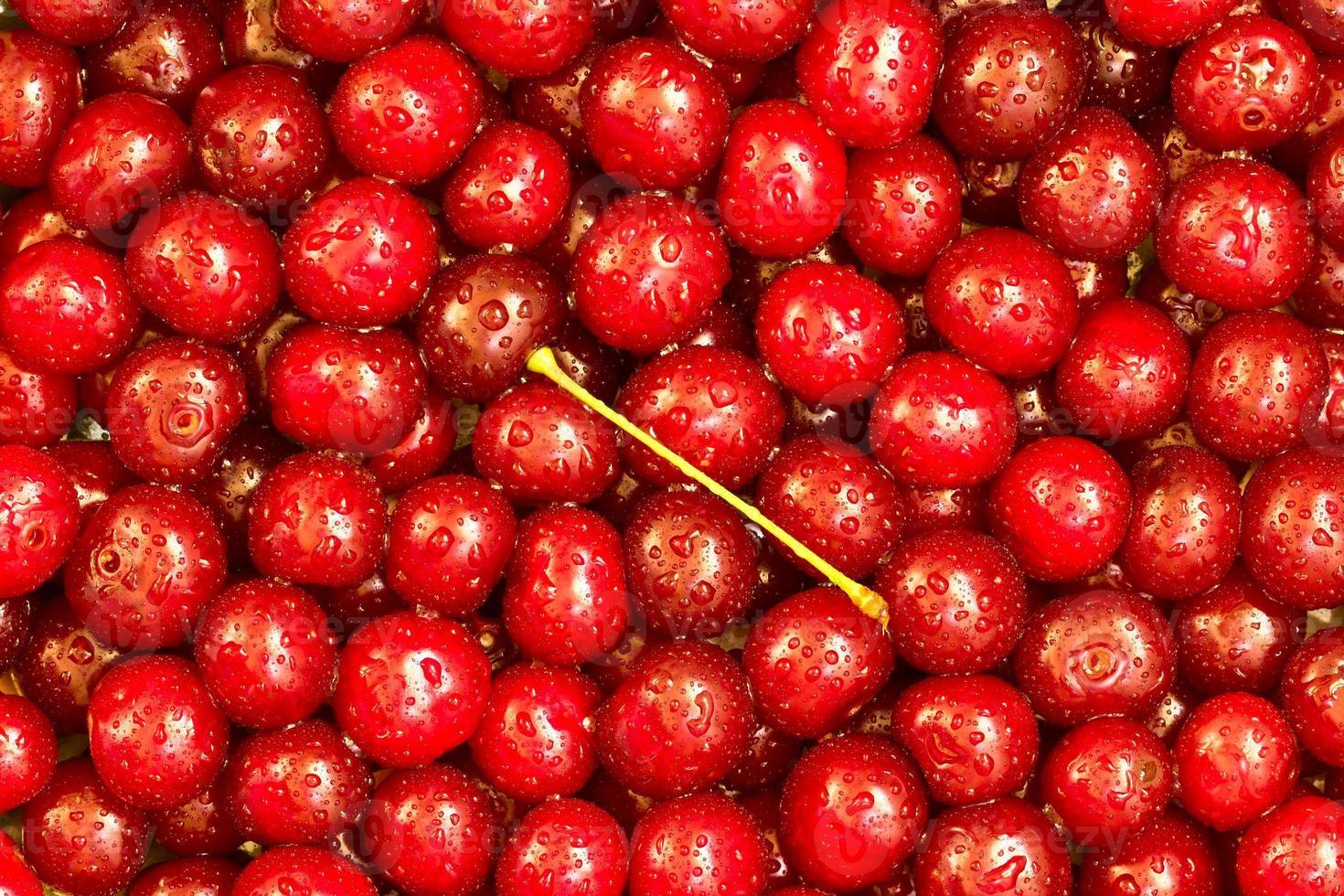 Cherries background photo