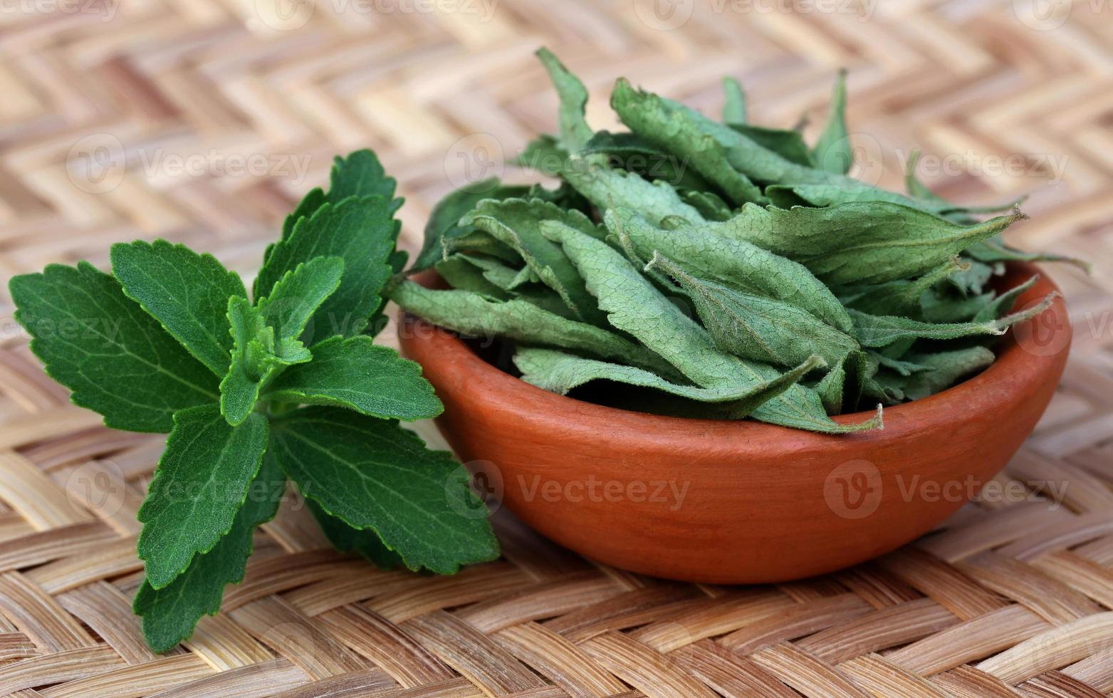 Green and dired Stevia leaves photo