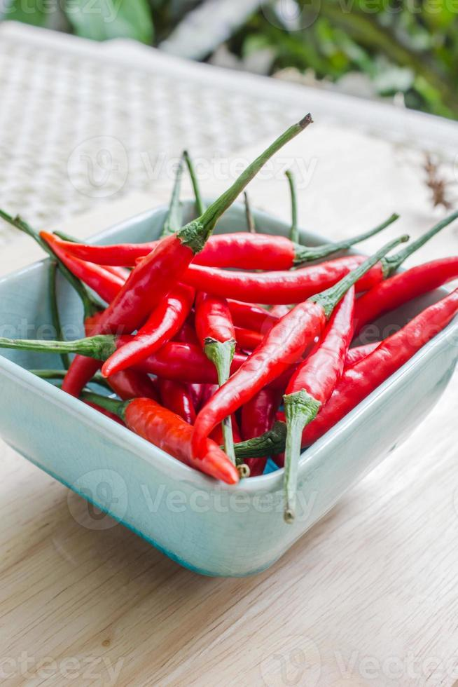 Red pepper isolated photo