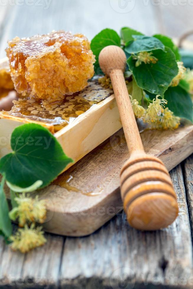 flores de tilo y miel en panal. foto
